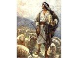 Shepherd Among His Flock